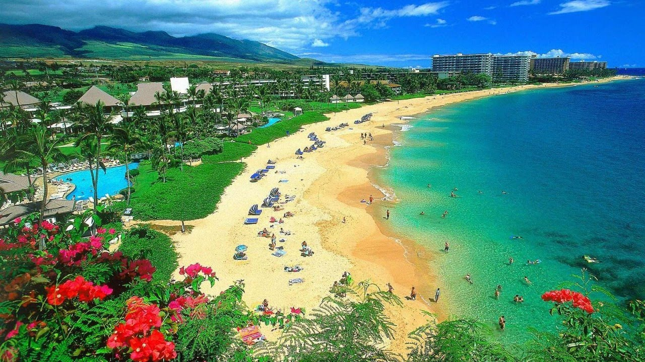 American: Phoenix-Maui for around $278 R/T - APR/MAY